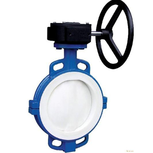 Cast Iron Butterfly Valves, DN80, PN50