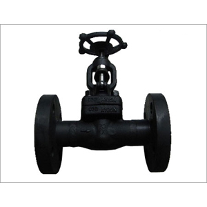 Forged Gate Valves, API 602, DN25, PN250