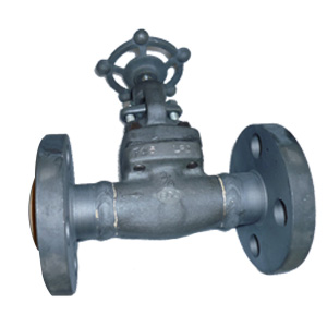 Forged Steel Globe Valves, A350, 600LB