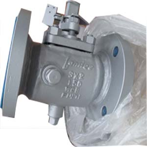 WCB Plug Valves, Steam Jacketed, RF