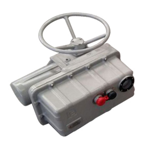 60 Hz Electric Valve Actuator, 3 Phase